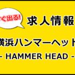 横浜ハンマーヘッドバイト求人